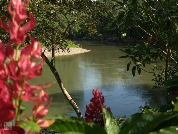 Uitzicht op de Arajuno rivier