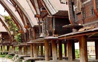Traditionele huizen in Toraja, Sulawesi